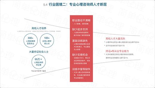 第五部分 中國心理咨詢師群像與特征